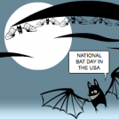 NATIONAL BAT DAY