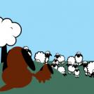Dogs & Sheep