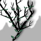 Fibonacci tree