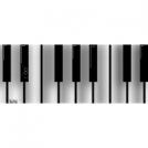 Play The Keys