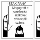Szakirány