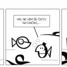 sardinarji