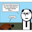 Plat-malion