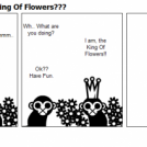 -The Two Monkeys- King Of Flowers???