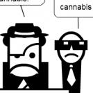 Drogue : ou passent les confiscations ?