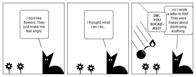 flowers vs. cat