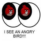 I see an angry bird!!!