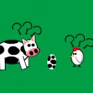 Chicken & Cow
