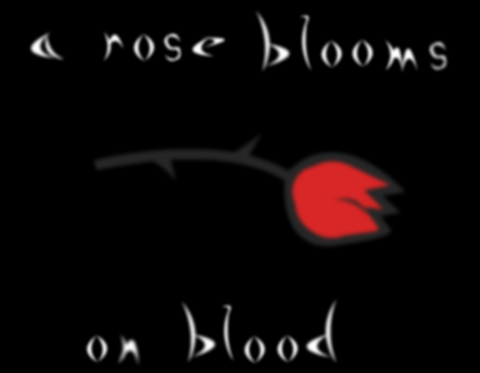 A rose blooms