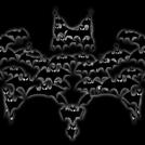 Bat Experiment