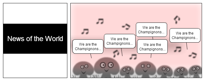 We are de champignons