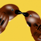 Artatxoriak  Sparrows