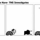 The Tortoise and the Hare- THS Investigates