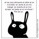 Emmanuel Jouret 179