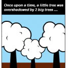 A TREE STORY !