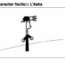 :::le character facile::: L'Asha