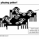 700 hits=Monkeys playing poker!