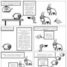 Folwark zwierzęcy