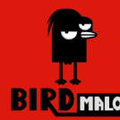 Bird Malo