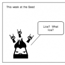 This week at the seed
