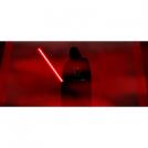 Vader Rogue One