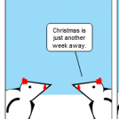 Avian Advent