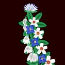 Un collar de flors - A flowers necklace