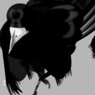 Oiseaux à voir