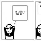 TED BOY