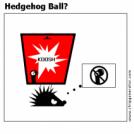 Hedgehog Ball?