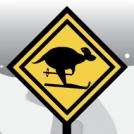 Aussies' - skier