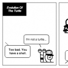 Evolution Of The Turtle