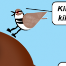 Don't Killdeer The Messenger