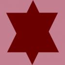 Joden Ster