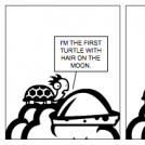 Turtles Can't breathe on the Moon...