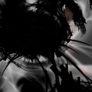 entity...