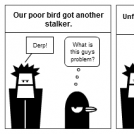 Derp Guy Meets Stalked Bird