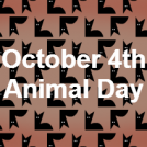 The SG for the Animal Day