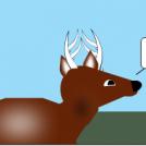Shuck a Buck
