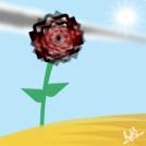 La Rosa Del Desierto