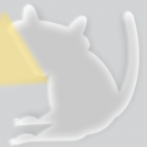 Raccoon Tutorial