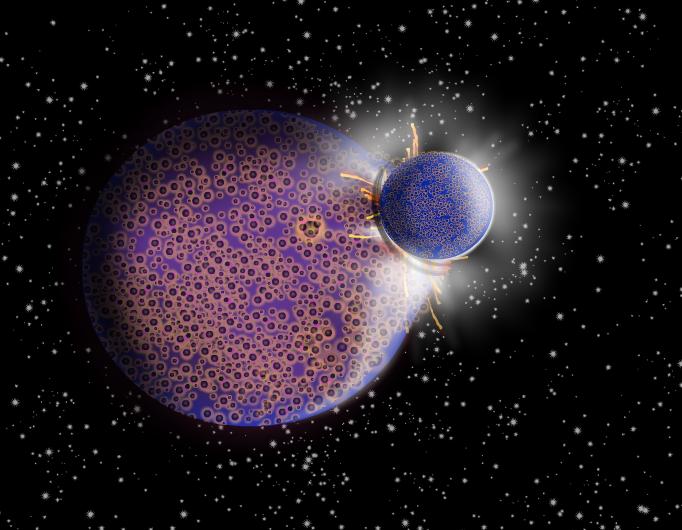 Moon's Origin