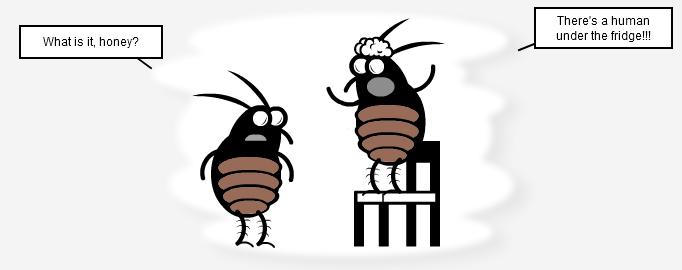 Los Cucarachos - The New Sound Of Los Cucarachos