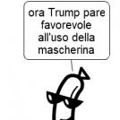 (2807) mascherine