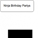 Ninja Birthday Partys