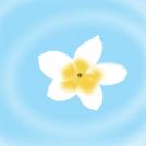 Hiru lore ur gainean Three flowers on the water
