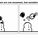 Snowmen are not snowmen, but snowbirds