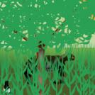 Bizitza basatia - Wildlife