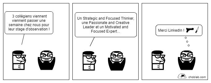 LinkedIn et profils bullshit