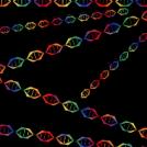 DNA rainbow!